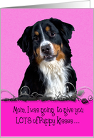 Mothers Day Licker License - featuring a Bernese Mountain Dog card