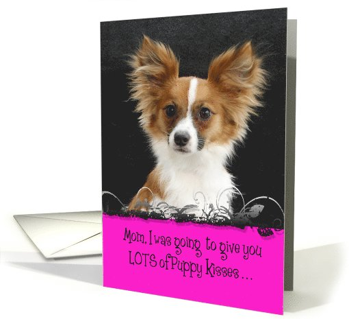 Mother's Day Licker License - featuring a Papillon card (809695)
