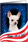 July 4th Card - featuring a white smooth Chihuahua card