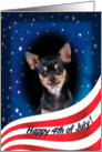 July 4th Card - featuring a black and tan smooth Chihuahua card