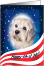 July 4th Card - featuring a Dandie Dinmont Terrier card