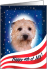 July 4th Card - featuring a Glen of Imaal Terrier card