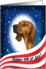 July 4th Card - featuring a Redbone Coonhound card