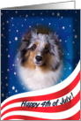 July 4th Card - featuring a blue merle Shetland Sheepdog card