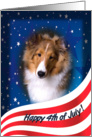July 4th Card - featuring a Shetland Sheepdog puppy card