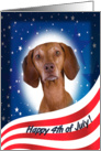 July 4th Card - featuring a Vizsla card