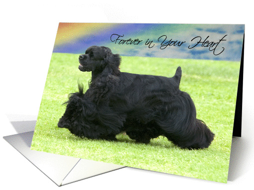 Pet Loss - Forever In Your Heart (Black Cocker Spaniel) card (916353)