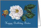 Happy Birthday Sister White Blossom on Bright Blue card