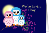 Expecting Announcement Boy, Owl Family card