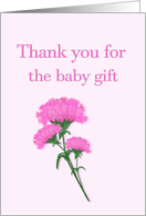 Thank you for the baby gift, Pink Carnations card