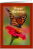 Happy Birthday, Monarch Butterfly card