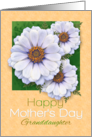 For Granddaughter Happy Mother's Day Zinnia Garden card