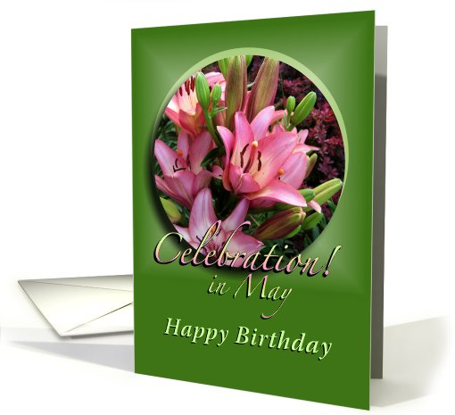 Happy May Birthday Pink Lilies card (572414)