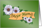 Mejor Premio de Mamá, Best Mom Award Spanish card