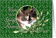 Recovery from Cataract Surgery - Calico Kitten card