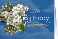 57th Birthday Party Invitation White Flower Blossoms card