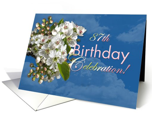 87th Birthday Party Invitation White Flower Blossoms card (807068)