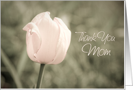 Pink Tulip Thank You Mother of the Bride Card