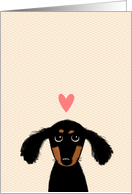 Cute Dachshund with Pink Valentine's Day Heart card