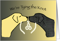 Engagement Party Black and Yellow Lab Dogs Invitation card