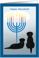 Happy Hanukkah Black Lab Dogs wth Menorah card