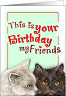bday/cat card