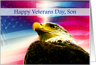 Happy Veterans Day Son flag Bald Eagle card