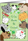 Pet Groomer's St. Patrick's Day, cats & dogs card