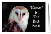 Boss's Day / From all of us, owl Whooo card