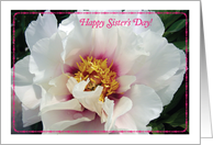Sister's Day, Only Sister, White Peony card