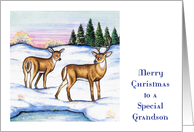 Christmas Money Card for Grandson, deer card