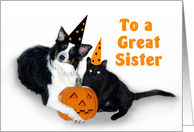 Halloween Dog and Cat, Sister card