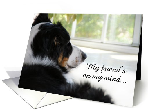 Waiting at the Window, Friend card (506282)