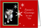 Kitten and Snowflakes, Vet card