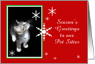 Kitten and Snowflakes, Pet Sitter card
