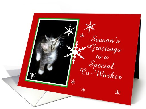 Kitten and Snowflakes, Co-Worker card (494046)