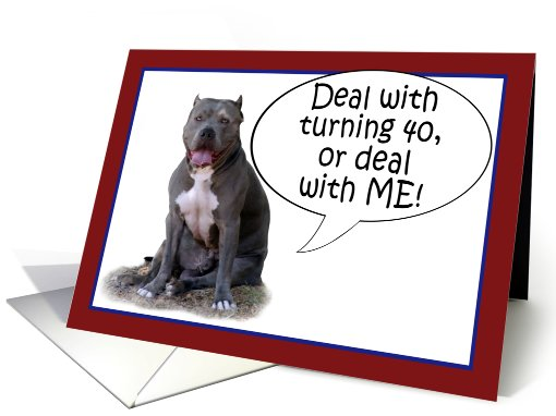 Pit Bull, Deal with it! Turning 40 card (627764)