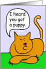 Tabby Cat Puppy Owner Congratulations card