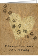 Paw Prints on our...