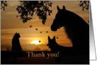 Thank you from Veterinarian card