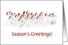 Seasons' Greetings Pelicans with Santa Hats Customize card