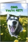 Cute Happy 42nd Cutomizable Birthday With Husky and Wildflowers card