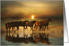 Horse Thank You, Horses on the Beach, Horse Photography Thank You card