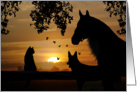 Pet Sympathy With Horse Dog And Cat card