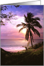 tropical Paradise Island Blank Note card