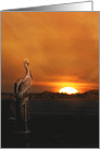 Pelican Piling Sunset Deepest Sympathy, Nautical Coastal card