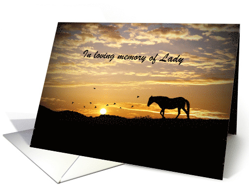 horse sympathy card to personalized with horse's name card (1238608)