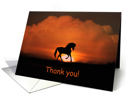 Thank you Veterinarian horse in the sunset card (1279154)