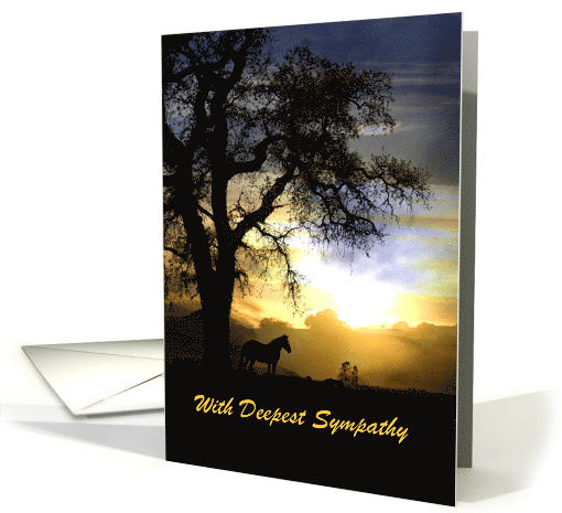 Sympathy card horse in sunset customizable card (1311952)