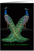 Happy National Siblings Day Two Peacocks Customizeable card
